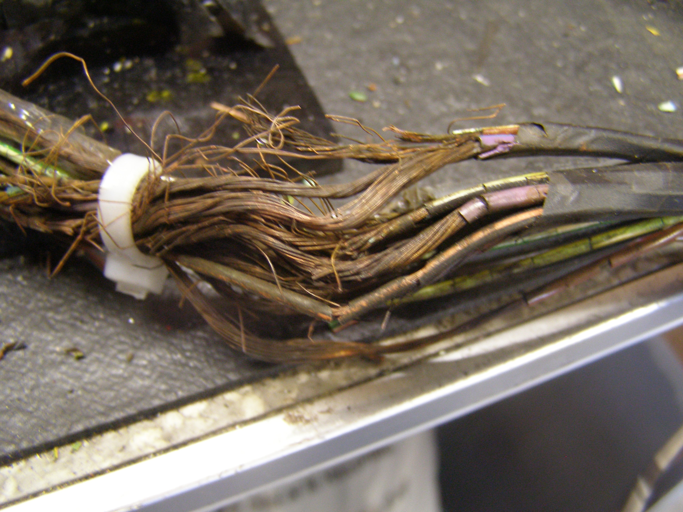 Biodegradable Wiring Harness
